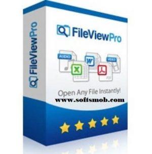FileViewPro 2018 License Key Crack Full Free Download