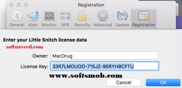 Little Snitch License Key